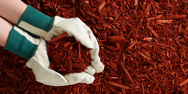 Rustic Red Mulch