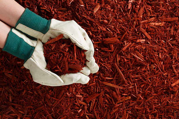 Coloured Mulch